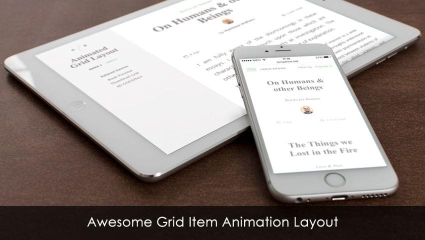 Awesome Grid Item Animation Layout