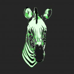 Downloadable Zebras