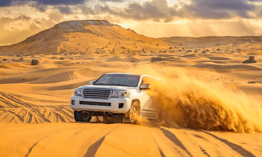 My Morning Desert Safari With Dune Bashing