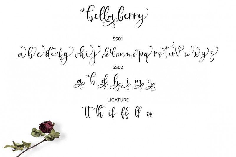 bellaberry-script-font-3