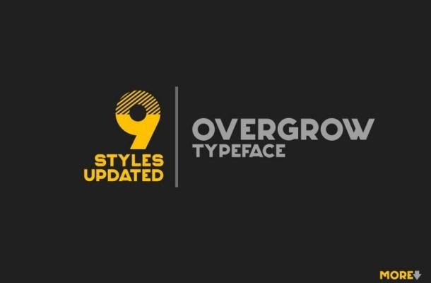 Overgrow Display Typeface