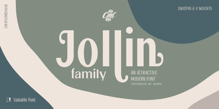 Jollin-Sans-Serif-Font-Family-1
