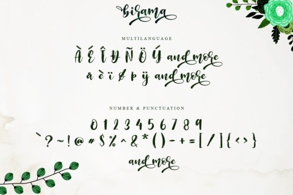 Birama-Calligraphy-Script-Font-4