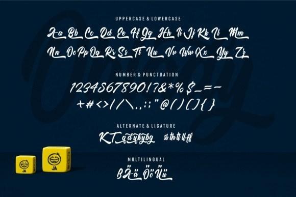 Oblady-Bold-Script-Font-3