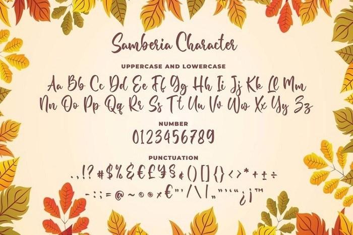 Samberia-Calligraphy-Script-Font-3