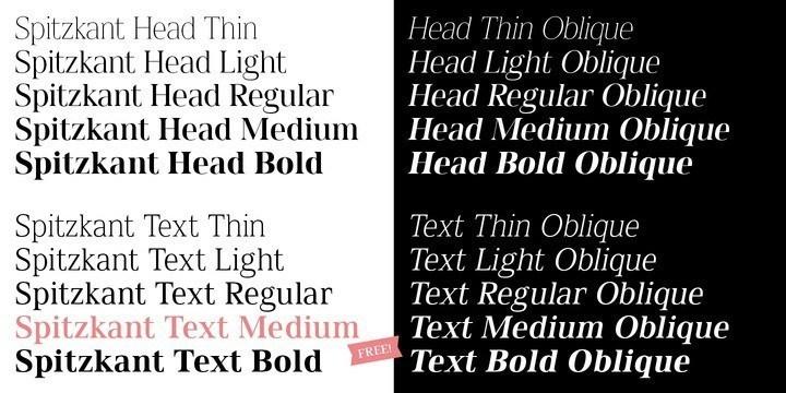 Spitzkant-Serif-Font-2