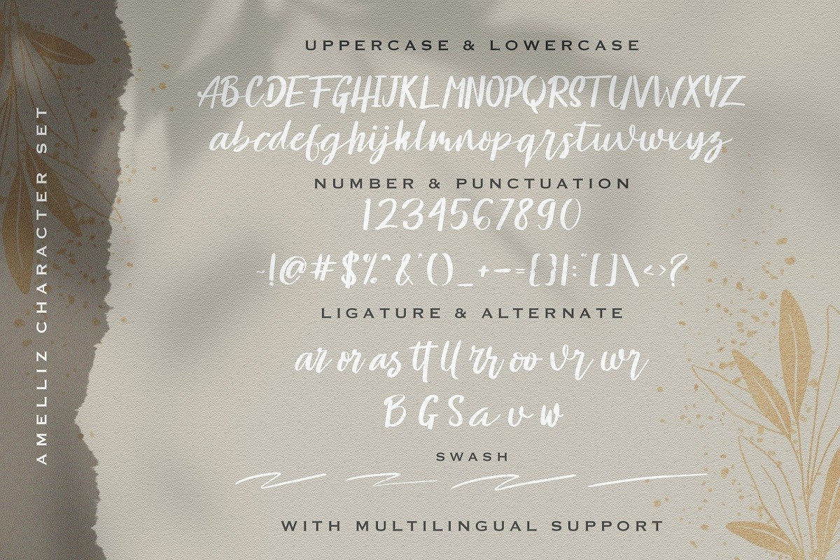 Amelliz-Brush-Script-Font-3