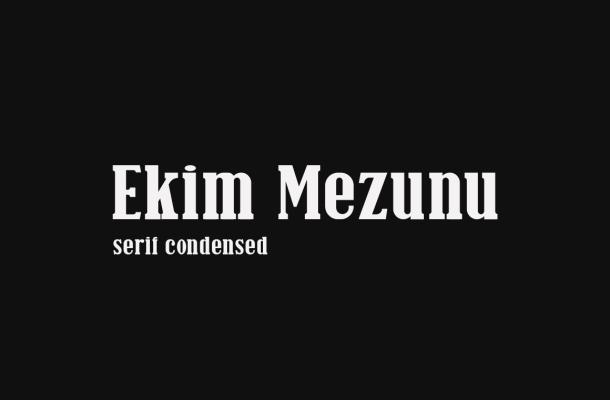 Ekim-Mezunu-Serif-Font-1