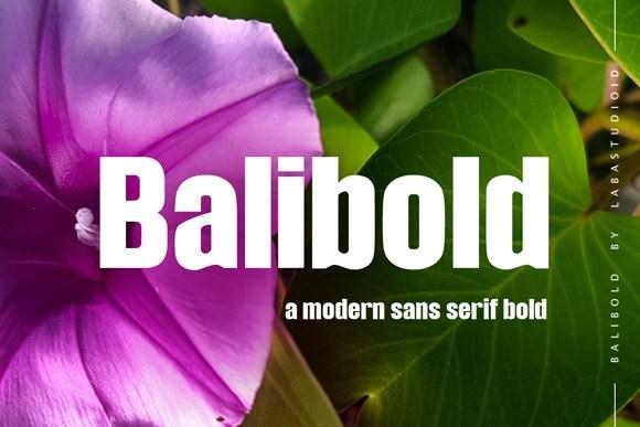 Balibold Sans Serif Typeface