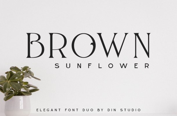 Brown Sunflower Serif Font