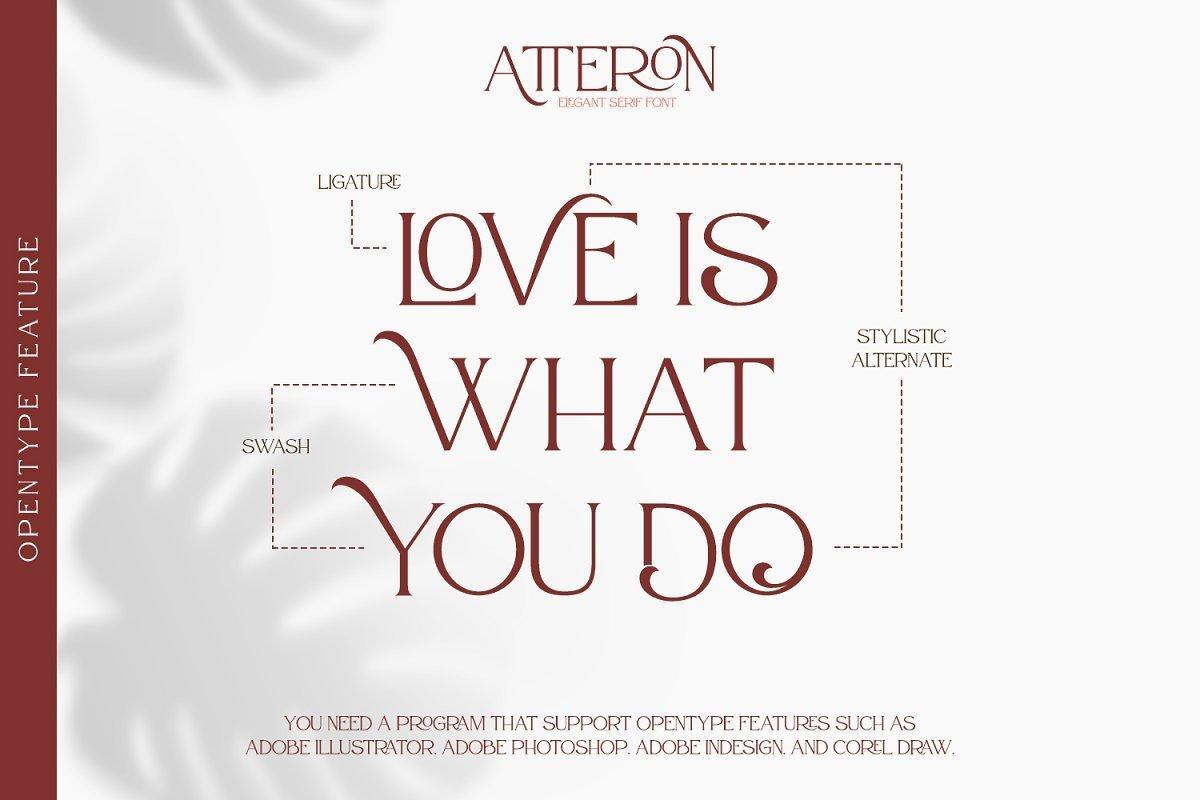Atteron-Elegant-Serif-Typeface-2