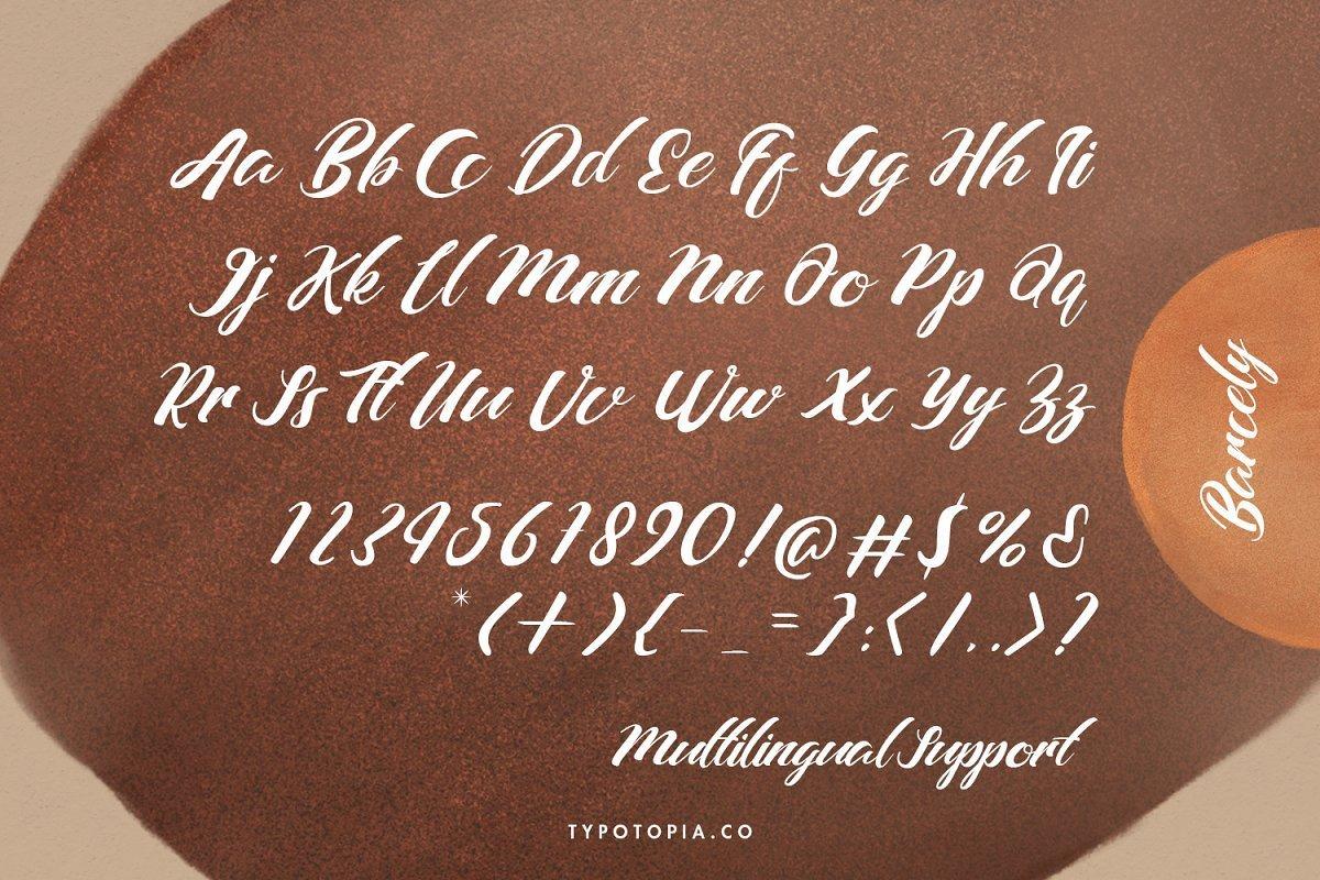Barcely-Fancy-Script-Font-3