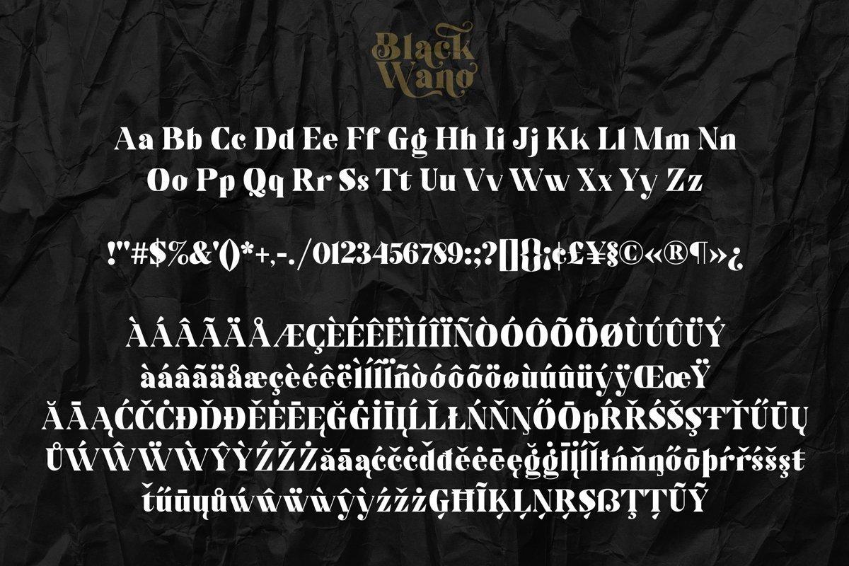 Black-Wano-Serif-Typeface-3