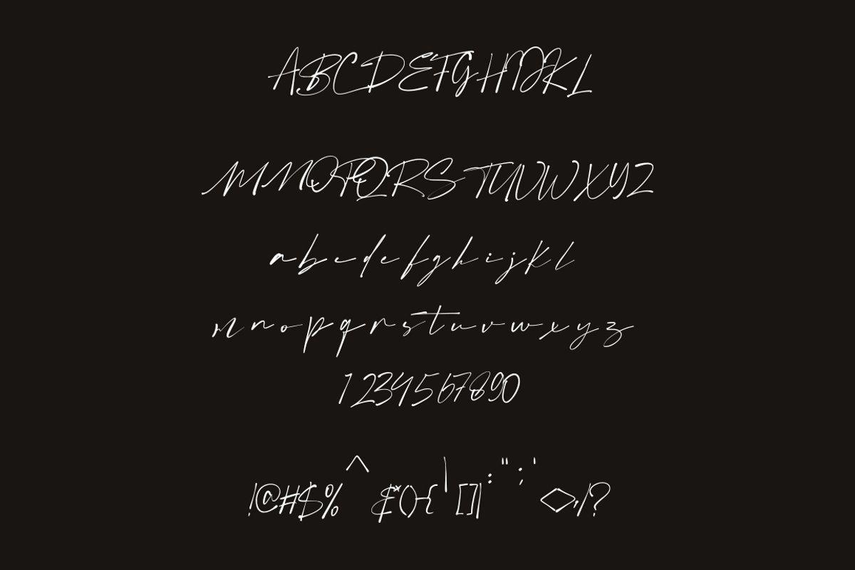 Boldris-Signature-Script-Font-3