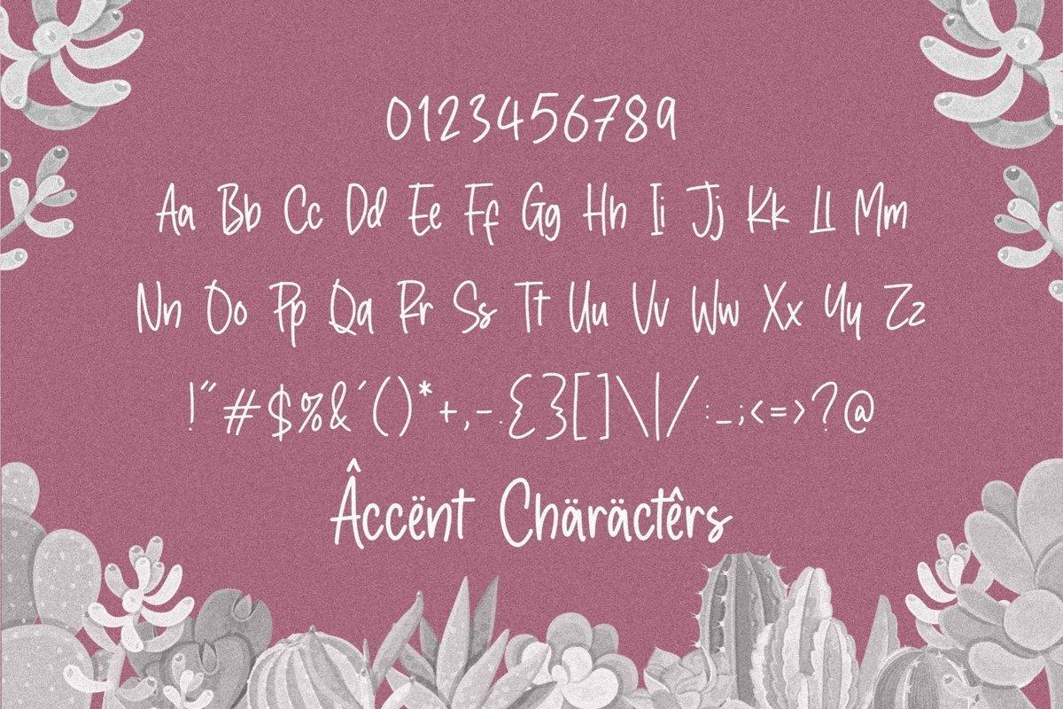 Crystal-Angles-Monoline-Script-Font-3