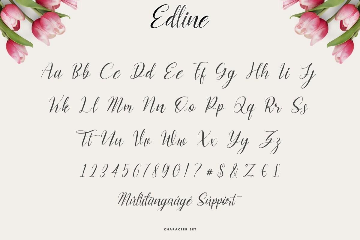 Edline-Modern-Calligraphy-Script-Font-3