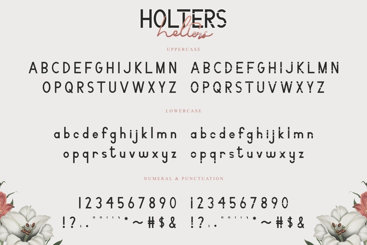 Holters-Font-Duo-2