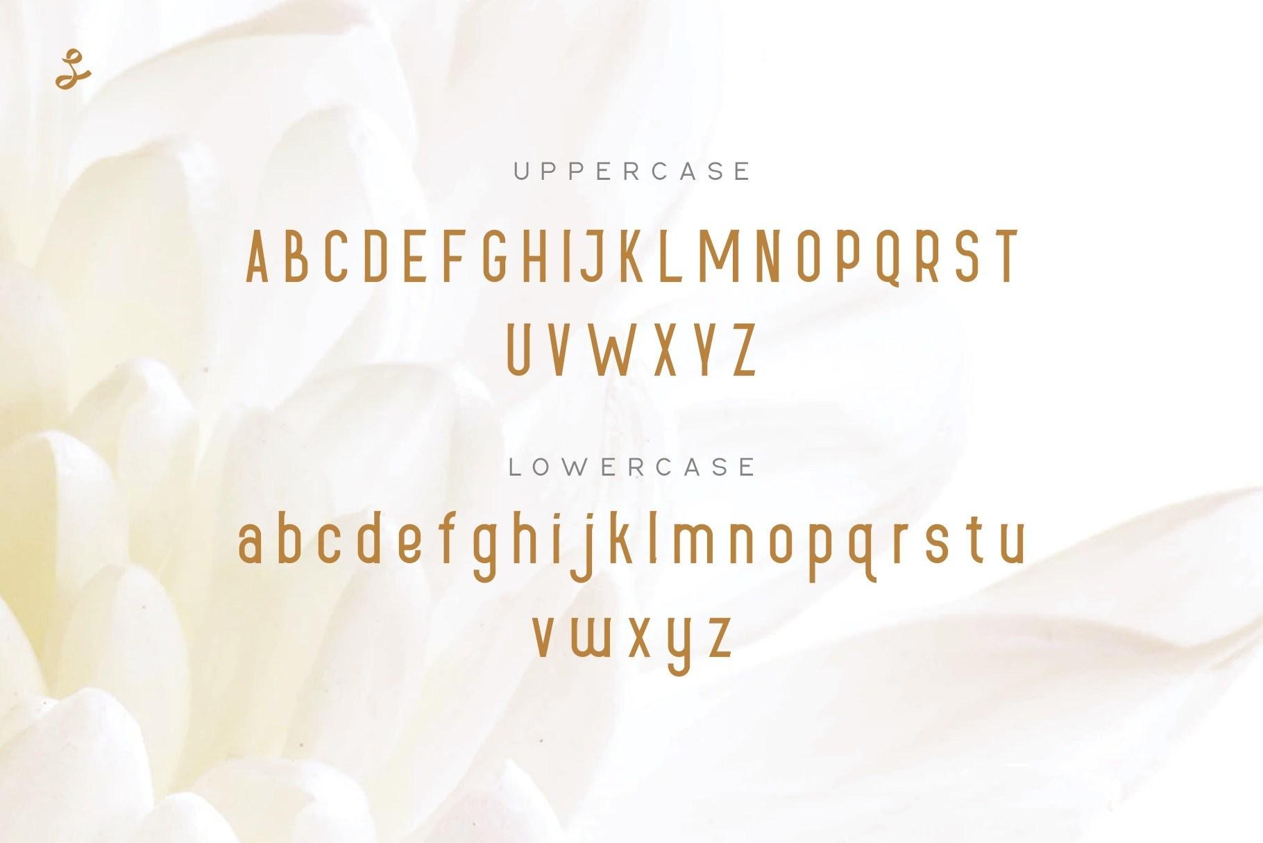 Lueue-Sans-Serif-Font-2