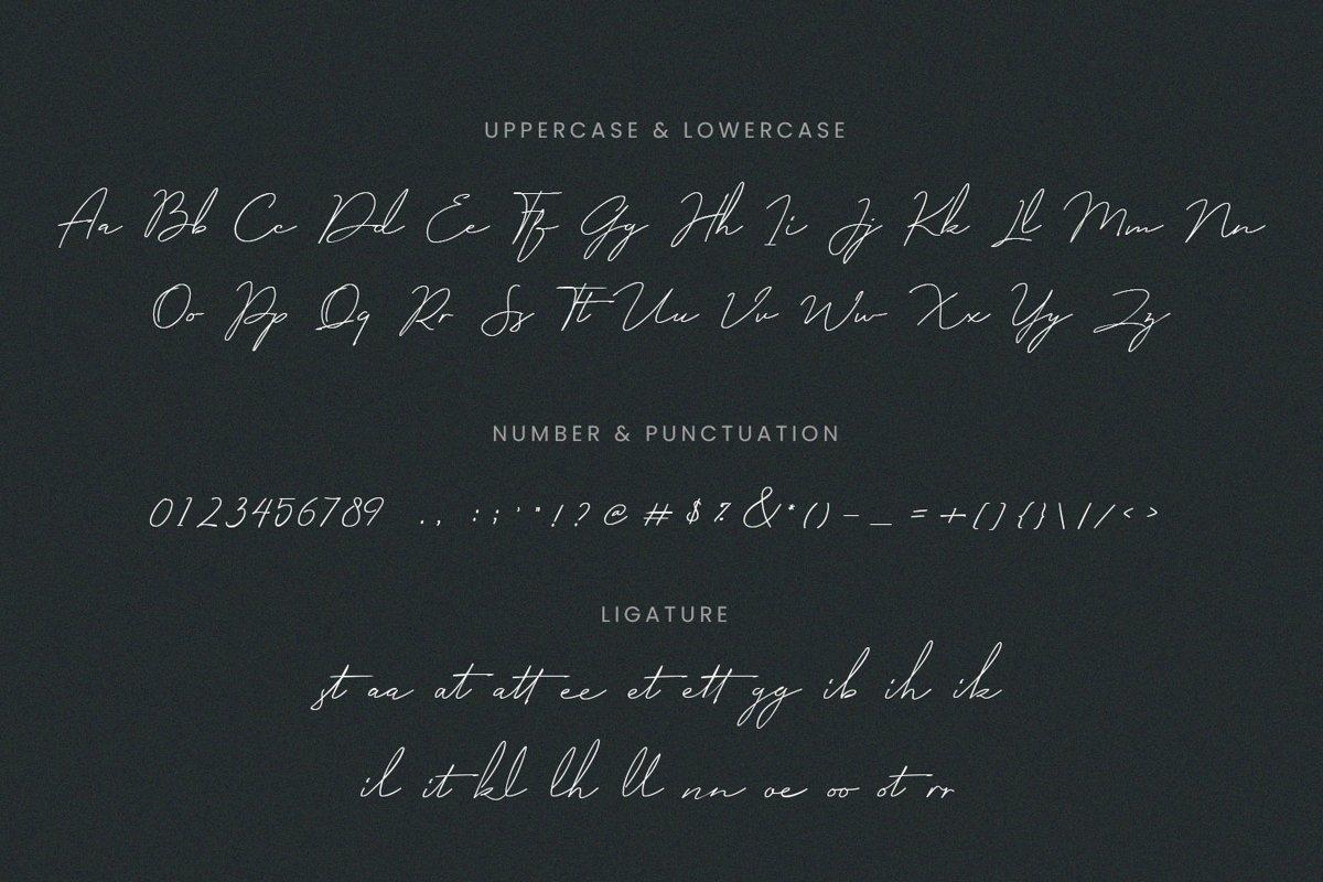Milano-Signature-Script-Font-3
