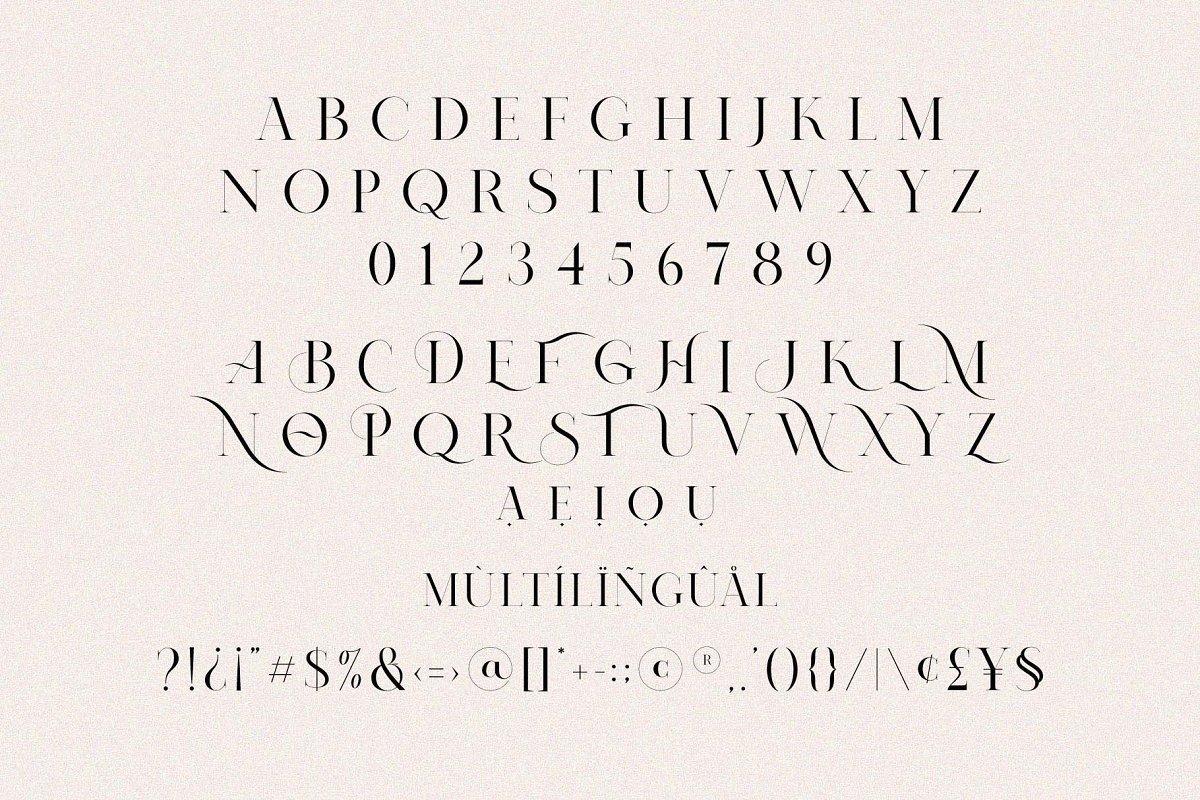 Nomark-Serif-Ligature-Typeface-3