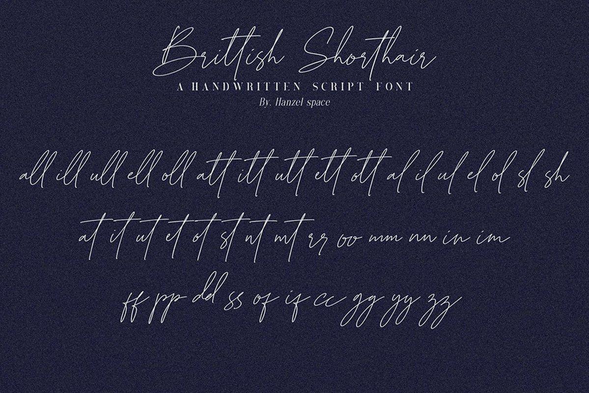 Brittish-Sorthair-Font-3