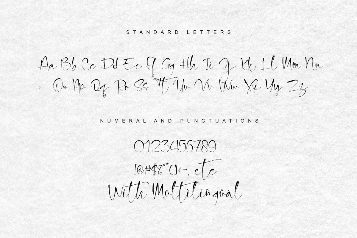 Snowland-Natural-Handwritten-Script-Font-3