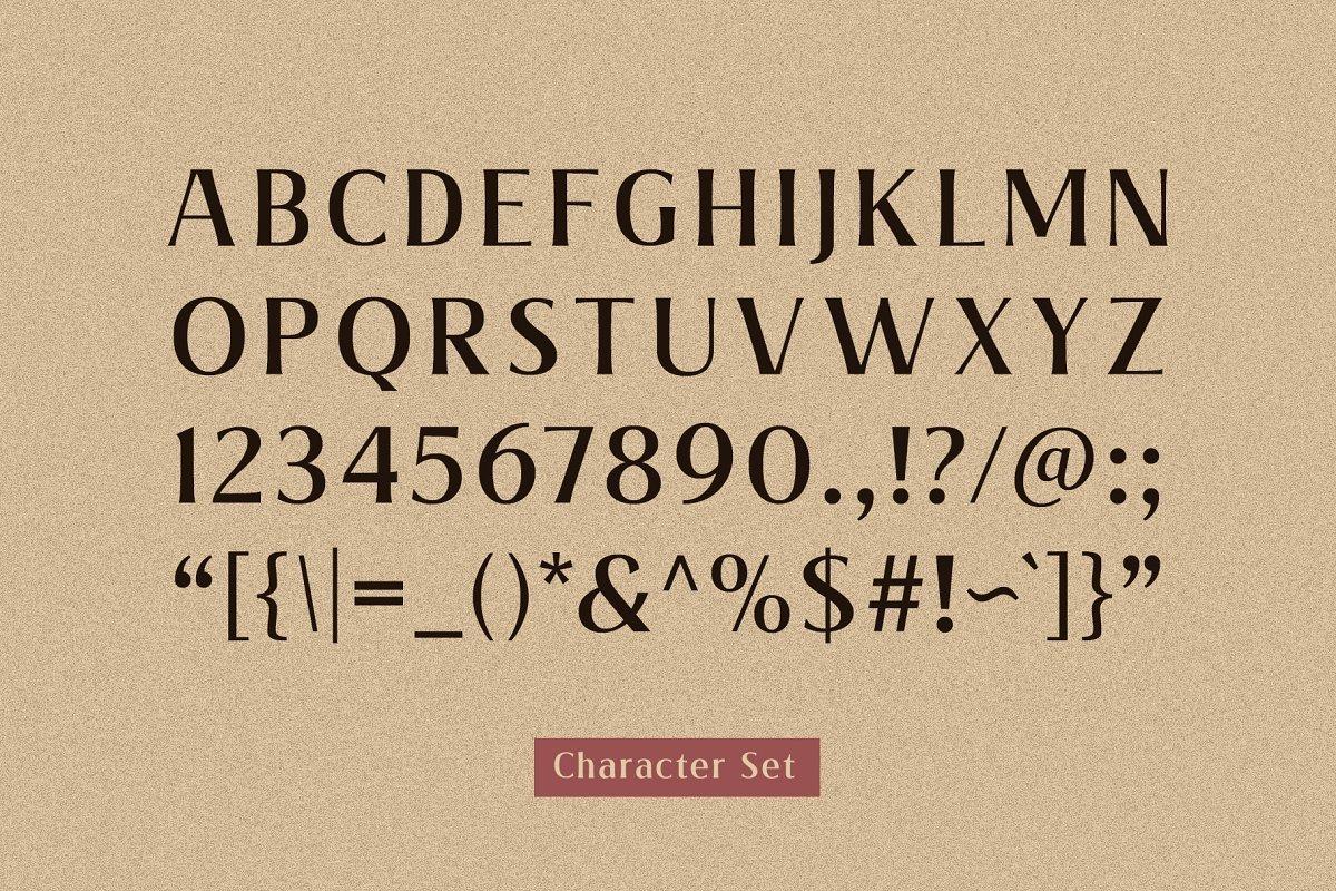 Valeria-Elegant-Serif-Font-3