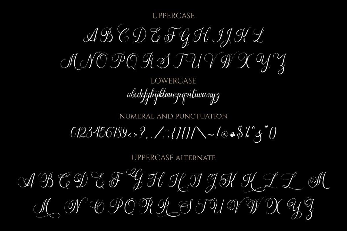 The-Adalyne-Script-Font-3