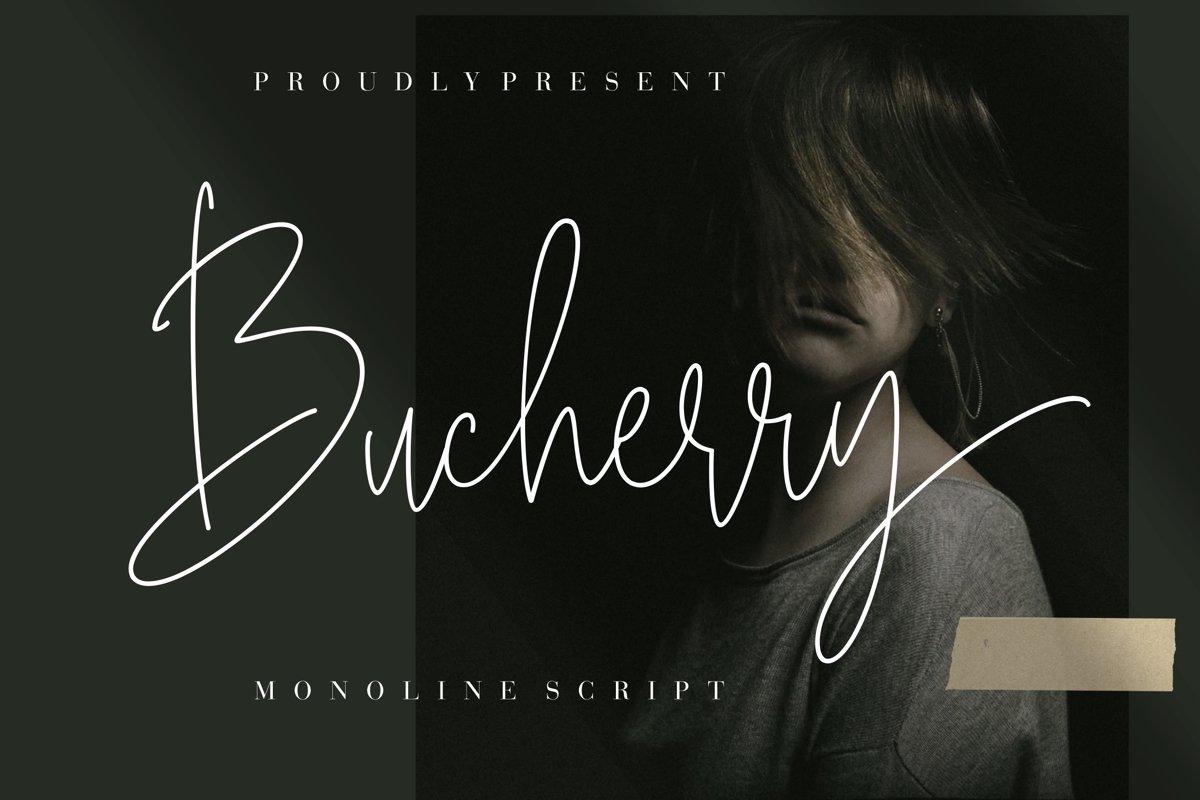 Bucherry-Font