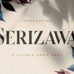 Serizawa Font