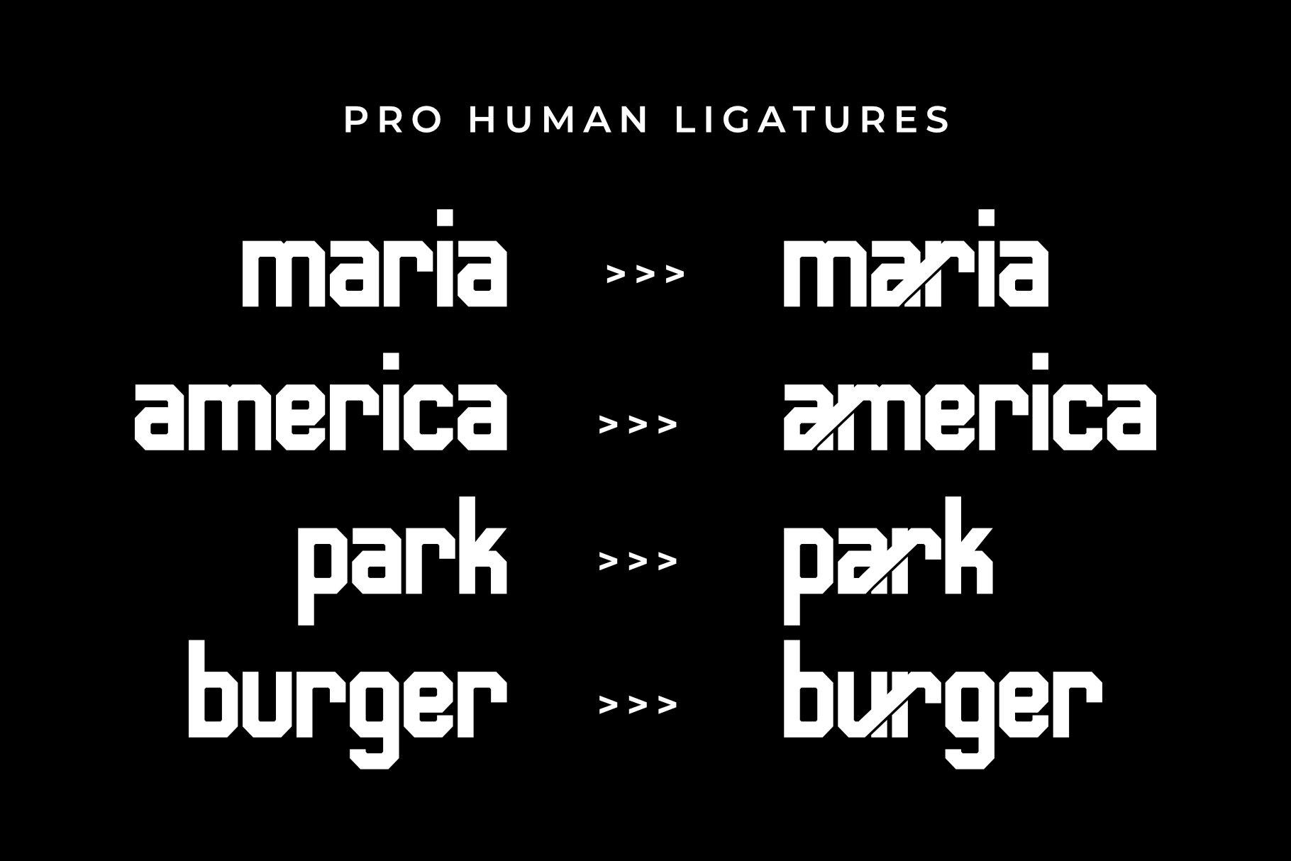 Human-Font-2