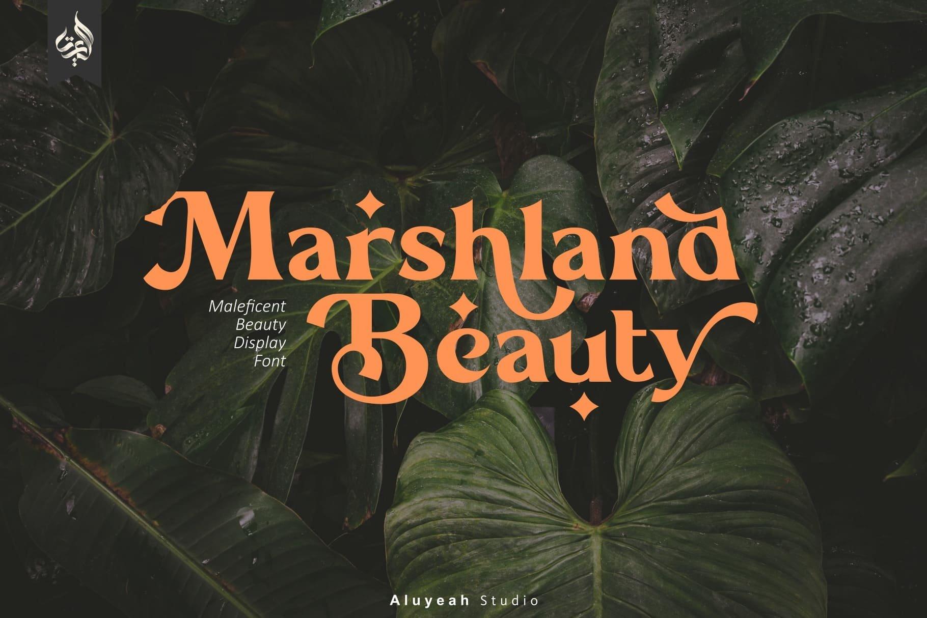 Marshland-Beauty-Font
