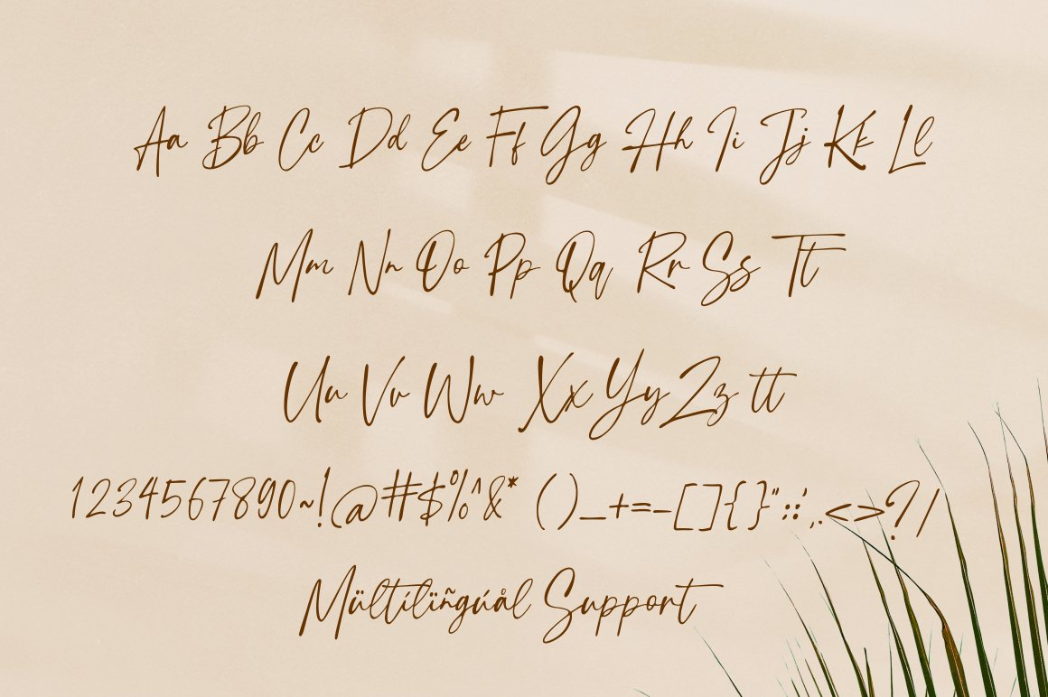 Tropical-Country-Font-3