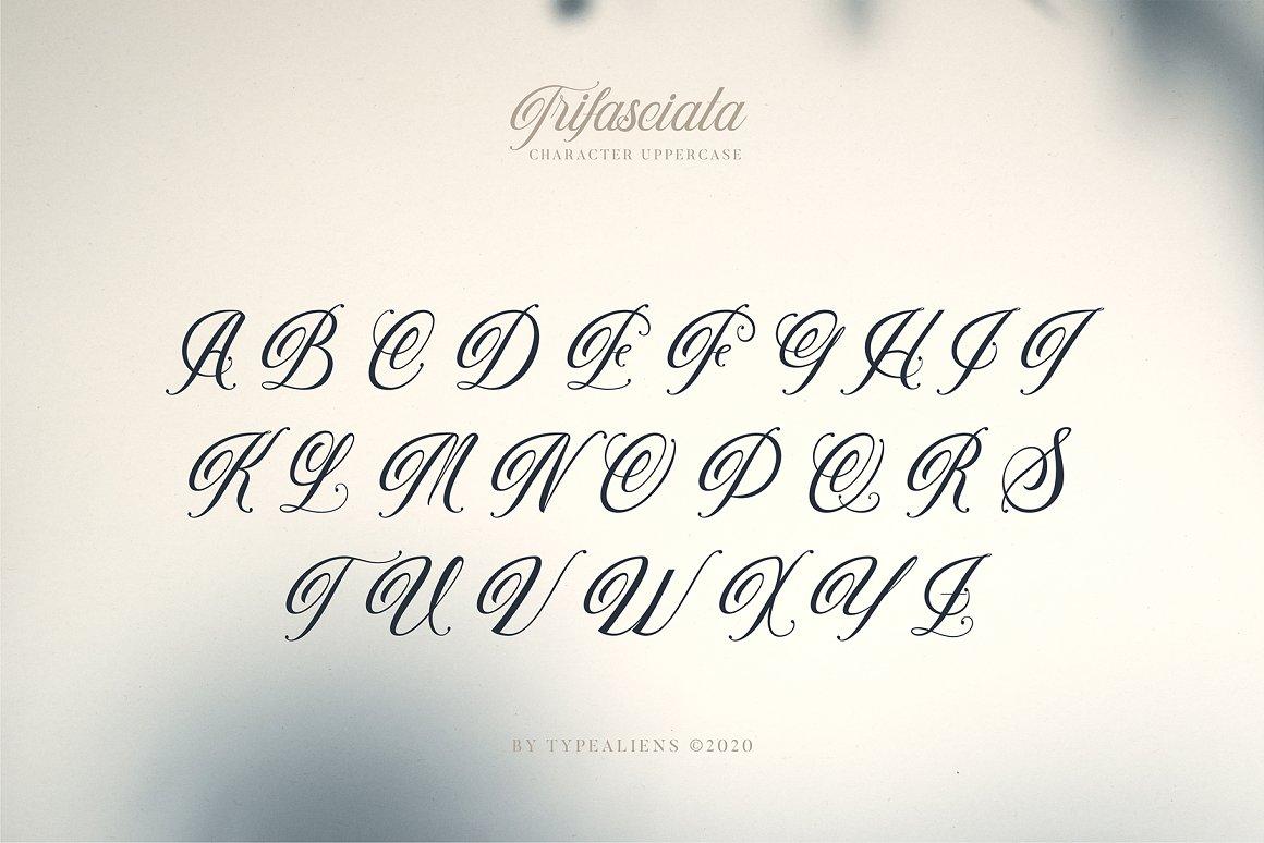 Trifasciata-Font-2