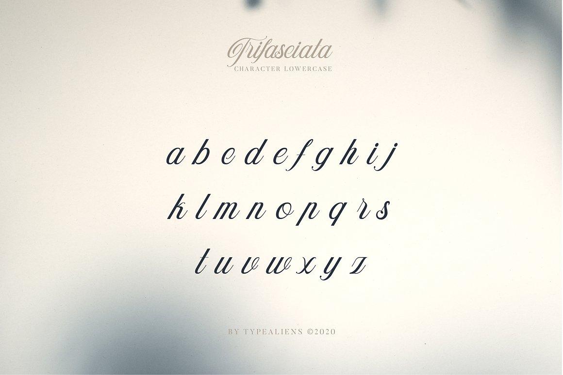 Trifasciata-Font-3