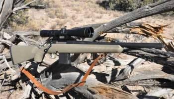 Review: Ruger American Predator  308 | Down Range TV
