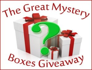 Enter The Great Mystery Boxes Giveaway: Secret Santa Edition today!