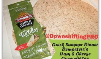 Quick Summer Meal @Dempsters Ham & Cheese Quesadillas–Easy and Good for you!