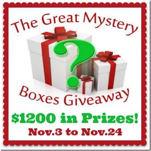 Mystery-Box-Giveaway-2014