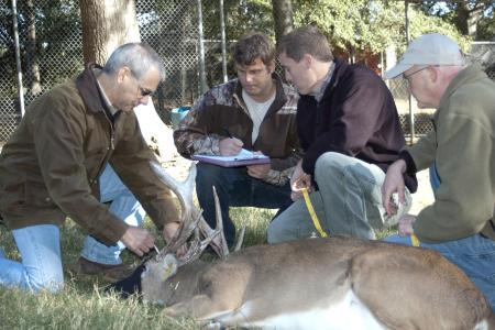 whitetail deer hunting podcast