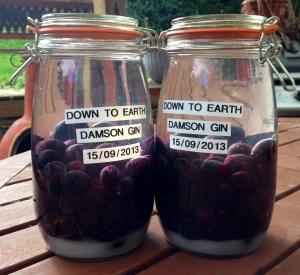 Down To Earth Damson Gin