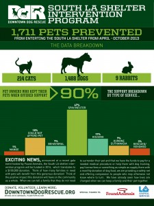 Downtown-Dog-Rescue-Los-Angeles-Shelter-Data