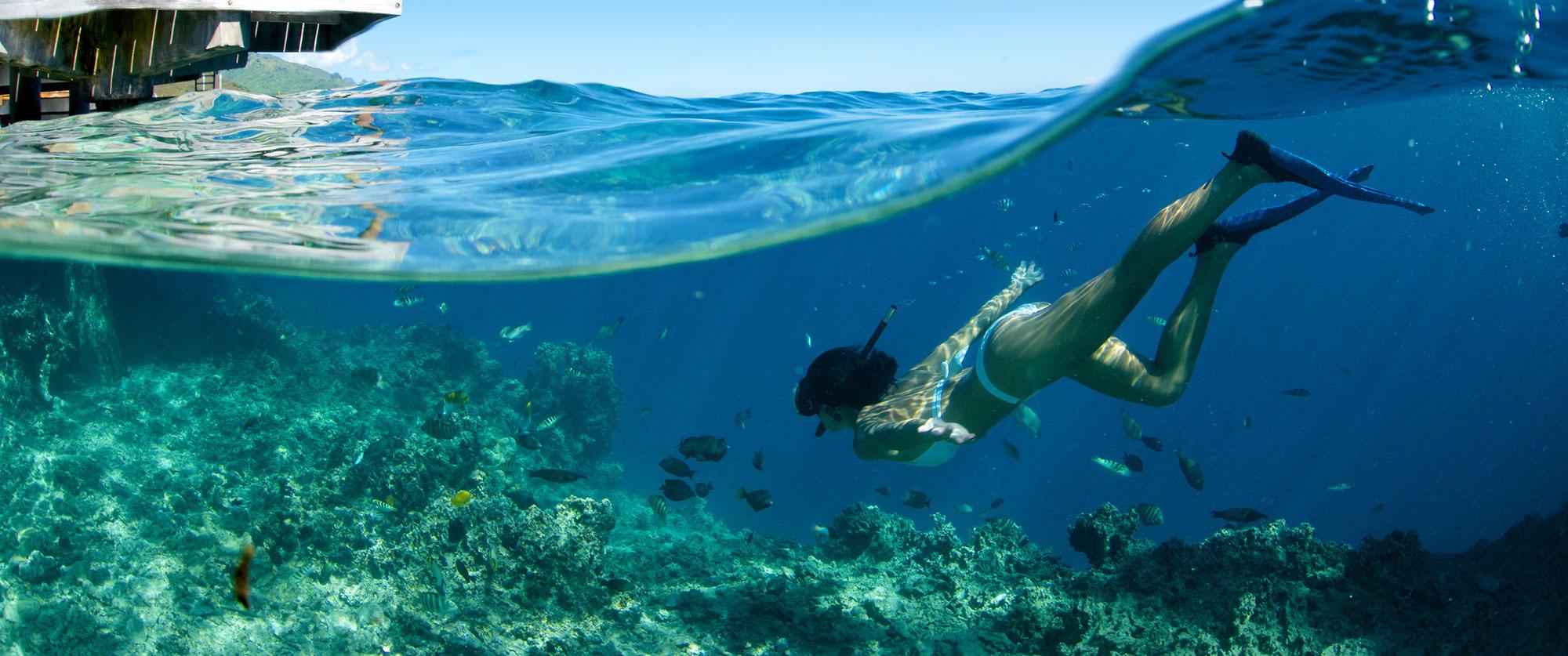 Tahiti Vacation Packages 2017