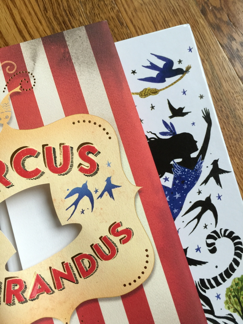 Image result for circus mirandus without dust jacket