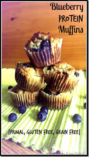 Paleo Blueberry Protein Muffins
