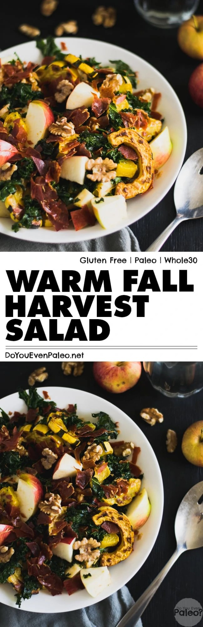 A warm fall harvest salad packed with kale, delicata squash, apples, walnuts, and crispy prosciutto—essentially a blend of sweet and salty autumn flavor. Paleo, gluten free, and Whole30!   DoYouEvenPaleo.net