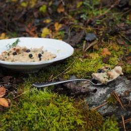 Norwegian Moose Stew (Elggryte)