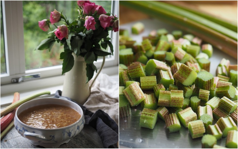 Norwegian Rhubarb Soup and Spruce Tip Ice Cream (rabarbragrøt og grandskudd iskrem)