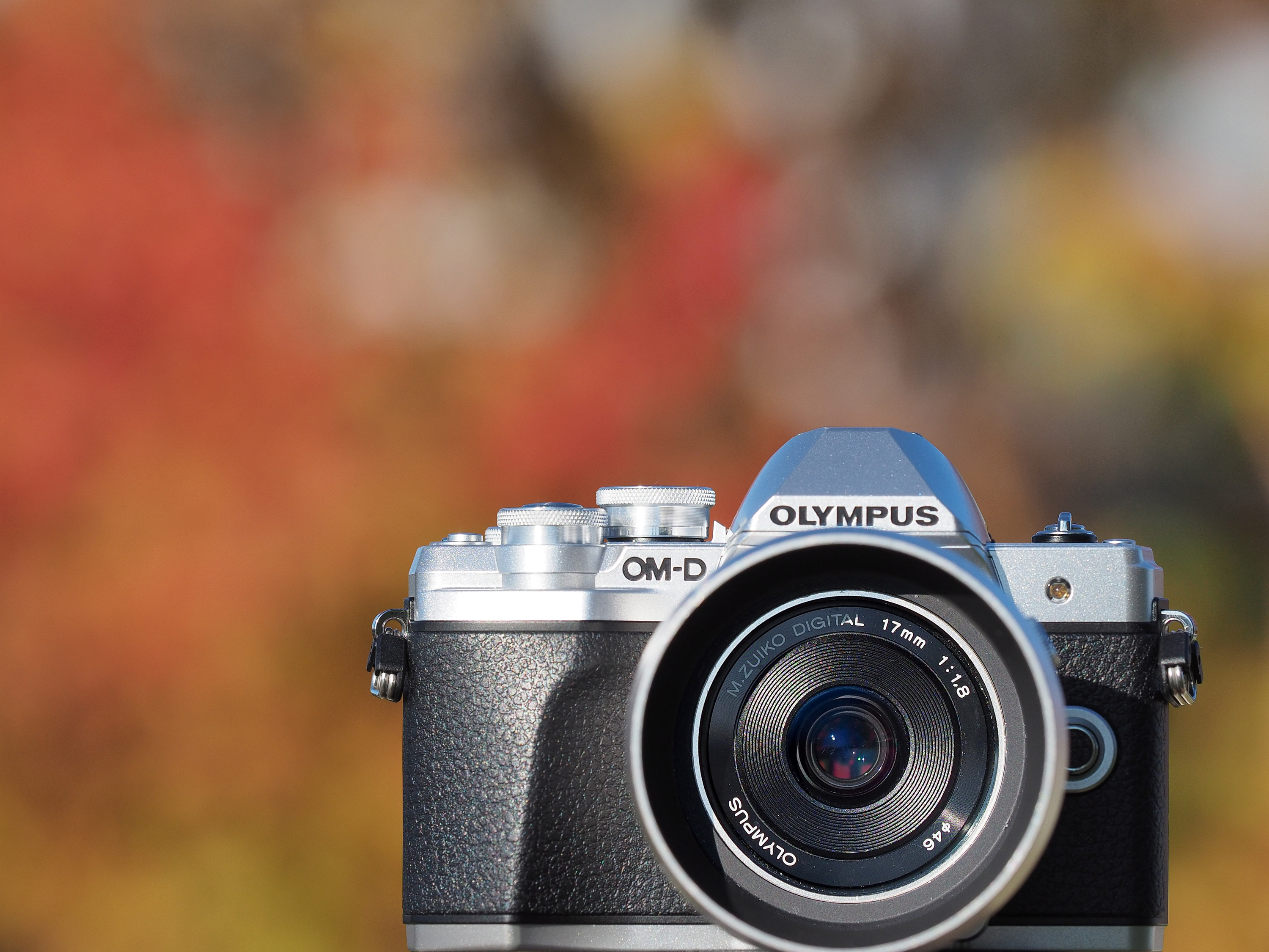 Olympus OM-D E-M10 Mark III Review: Digital Photography Review