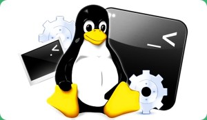 5 Tips to See How Linux Add User to Group